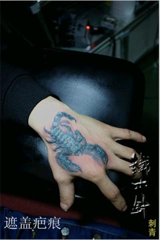 武汉纹身铁木针刺青手背蝎子纹身图案!
